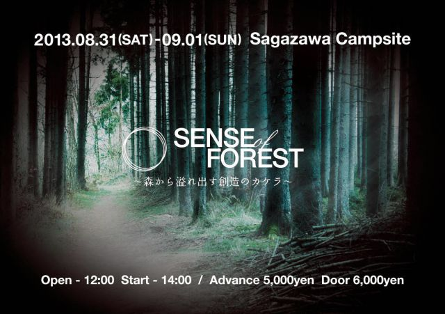 SENSE of FOREST