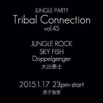 JUNGLE PARTY: Tribal Connection VOL.45