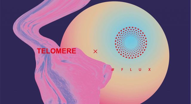 Telomere x #FLUX